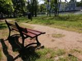 Park Miejski w Kaliszu. Wiele ławek wymaga naprawy lub czyszczenia ZDJĘCIA