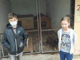 Uczniowie z podstawówki w Piątku pomagają zwierzętom. Zawieźli karmę i koce ZDJĘCIA