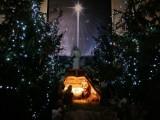 Boże Narodzenie 2020, Piotrków: szopki bożonarodzeniowe w kościołach w Piotrkowie [ZDJĘCIA]