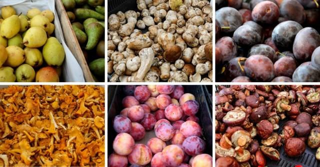Miłośników grzybków zaboli portfel! A ile zapłacimy za najbardziej sezonowe owoce jak gruszki i śliwki? Porównaliśmy ceny na kilku szczecińskich targowiskach. Niektóre z nich raczej niemiło zaskakują!
