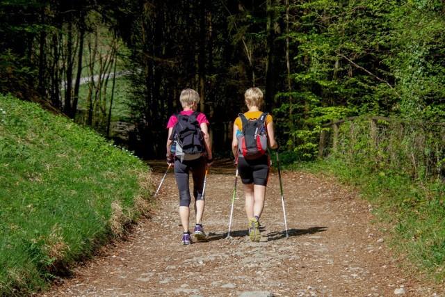 Do wyboru jest kilka kategorii, różniących się poziomem trudności, m.in. Nordic Walking.