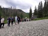 Prawie 1,3 mln turystów latem wędrowało po Tatrach. Dużo, choć mnie niż rok temu