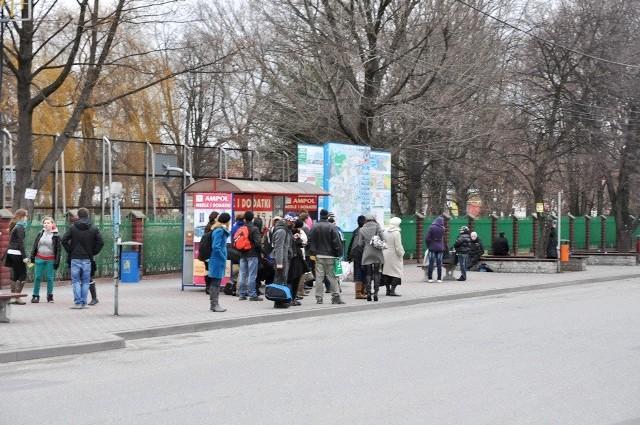 Z centrum Brzeska po południu nie odjedzie żaden autobus