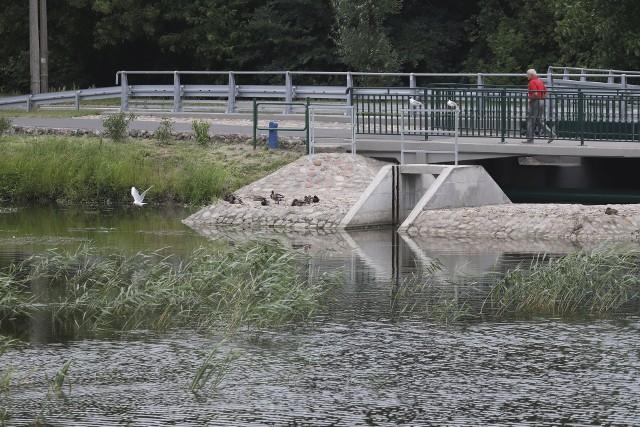 – Dlatego teraz, w okresie letnim, niewskazane jest wykaszanie zbiorników. Będziemy mogli to zrobić dopiero pod koniec lata lub na początku jesieni – zapewnia.