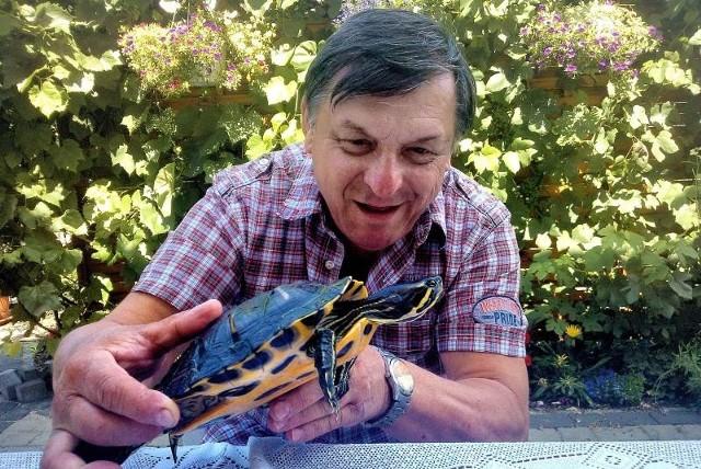 Adam Wołkowski z żółwiem zanim ten został oddany weterynarzowi. Okaz miał 28,5 centymetra długości. Został złapany na dżdżownicę.
