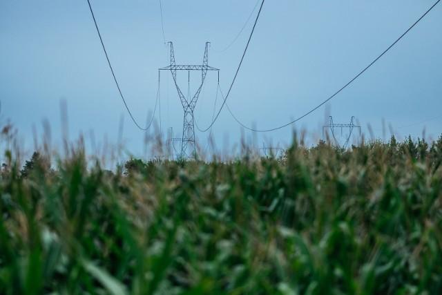 W podpoznańskich Plewiskach znajduje się stacja elektroenergetyczna 400/220/110 kV, jedna z największych w Polsce, wchodząca w skład Krajowej Sieci Przesyłowej.