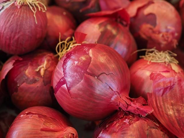 Średnio o 96 proc. wzrosła w tym roku cena skupu cebuli w Polsce. Rok temu producenci dostawali około 60-70 groszy za kilogram, dzisiaj 1,38 złotych za kilogramTo najwyższa cena hurtowa od 2004 roku- podają analitycy rynku.