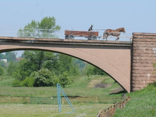 Festyn miał się odbyć w okolicach mostu. Gdy jednak wylewa rzeka, teren robi się bardzo podmokły.