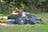 Na terenie Przystanku Woodstock i w okolicznych lasach jest jeszcze masa śmieci!