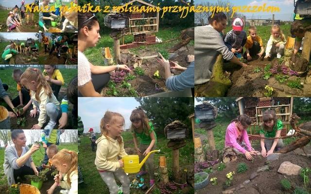 Opolskie dzieci dbają o pszczoły. Zostały za to wyróżnione!Dzieci z Jastrzębia podczas zajęć edukacyjnych