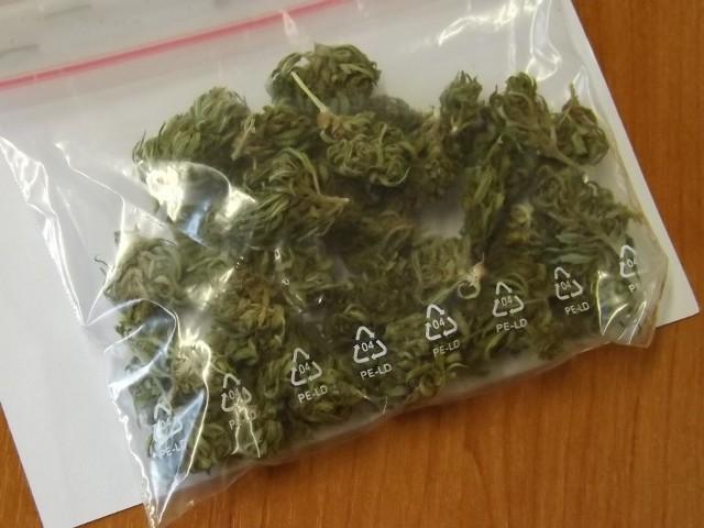 Marihuana znaleziona u jednego z mężczyzn.