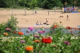 Plaża i baseny nad Wartą w Sieradzu. Niebawem otwarcie. W rzece już kąpiele ZDJĘCIA