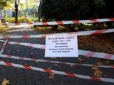 Jasielski park zamknięty. Trwają prace w ramach rewitalizacji miasta [ZDJĘCIA]