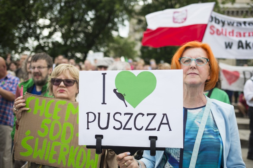 Warszawa: Protest Greenpeace przeciwko wycince Puszczy Białowieskiej [ZDJĘCIA] [WIDEO]