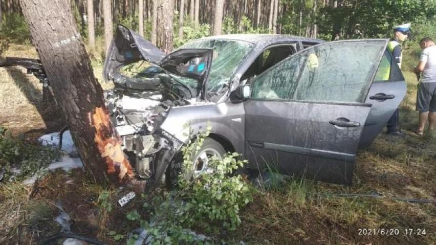Śmiertelny wypadek na DK11 w Wielkopolsce. Nie żyje nastolatek