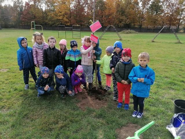 Przedszkolaczki z Rozwad zasadziły drzewo.
