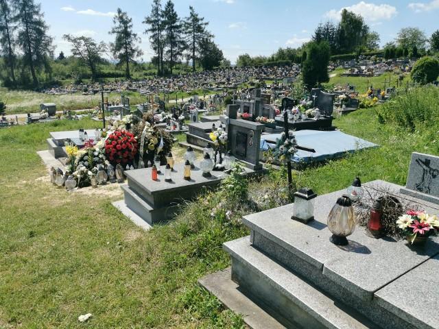 Według Zakładu Usług Komunalnych w Przemyślu dziki pojawiają się najczęściej w nowej części Cmentarza Głównego.