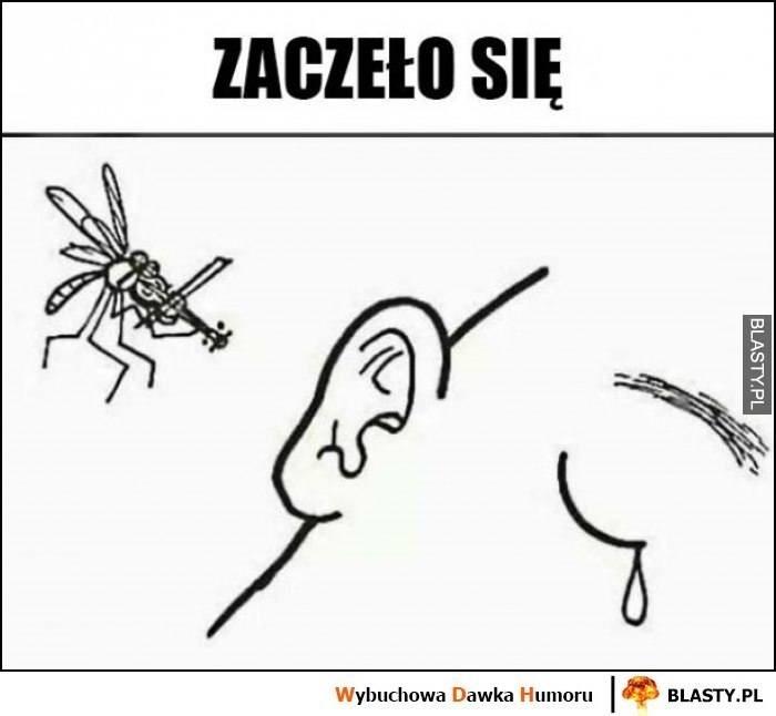 Memy o komarach. Te małe hultaje doprowadzają nas do szału. Zobacz, jak internet reaguje na plagę komarów [15.07.2021]