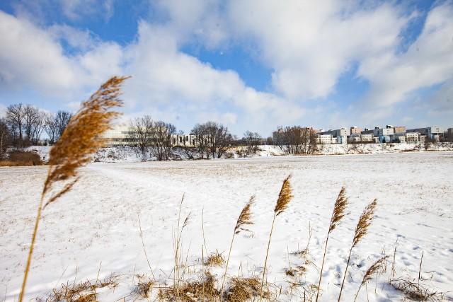 Łąki Nowohuckie zimą to równie piękny widok, co latem, czy wiosną. Zwłaszcza przy słonecznej pogodzie