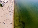 Sinice nad morzem i w jeziorach na Pomorzu. Zamknięte kąpieliska 24.08.2020 r. Zobaczcie zdjęcia plaż z drona! Tak wygląda zakwit sinic!