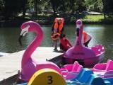 Weekend na Młynku - łodzianie wypoczywali nad wodą