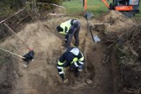 Szczątki niemieckich żołnierzy odkryto w Zęblewie w gminie Szemud. Pochodzą z drugiej wojny światowej, trafią na cmentarz pod Szczecinem