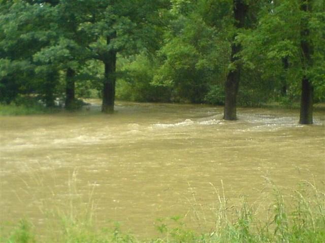 Podtopienia w Branicach Zamku. Z koryta wystąpila rzeka Opava. Zdjecia przyslal internauta maniek.