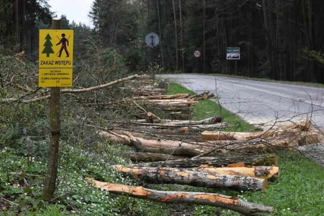 Trwa wycinka drzew