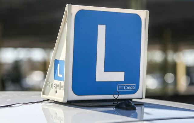 Egzamin na prawo jazdy będzie odbywał się bez egzaminatora? To na razie pieśń przyszłości, ale jest już testowane urządzenie, które miałoby to umożliwić.