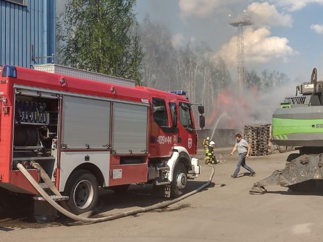 Ogień zajął składowisko trocin o pow. 2500 metrów kwadratowychZobacz kolejne zdjęcia. Przesuwaj zdjęcia w prawo - naciśnij strzałkę lub przycisk NASTĘPNE >>>
