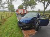 Śmiertelny wypadek koło Darłowa 10.09.2019. Na drodze wojewódzkiej nr 205 samochód uderzył w drzewo. Kierowca opla nie żyje