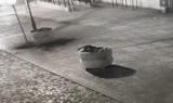 Łobuz, który zrobił sobie wycieczkę od gazonu do gazonu z bratkami w Kożuchowie złapany na kamerze miejskiego monitoringu