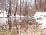 Zimowe pływanie Drwęcą-Welem