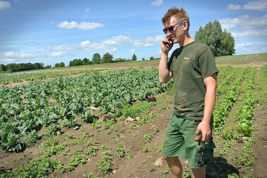 Unijne rolnictwo się starzeje. Za to, w Polsce, młodych rolników coraz więcej