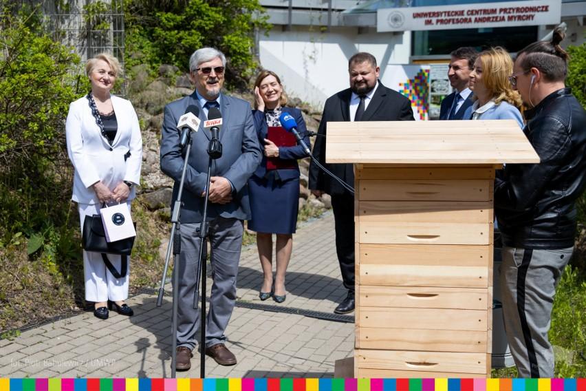 W Uniwersyteckim Centrum Przyrodniczym w Białymstoku powstanie wystawa o pszczołach (zdjęcia)