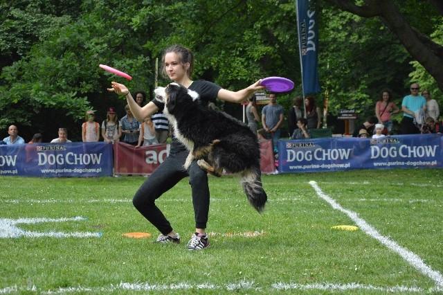 Zawody dogfrisbee czyli Dog Chow Disc Cup 2016 w parku Południowym