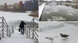 Kraków. Zamarznięta Wisła, zalewy i stawy. Zobacz, jak w pełni zimy wyglądają akweny wodne [ZDJĘCIA]