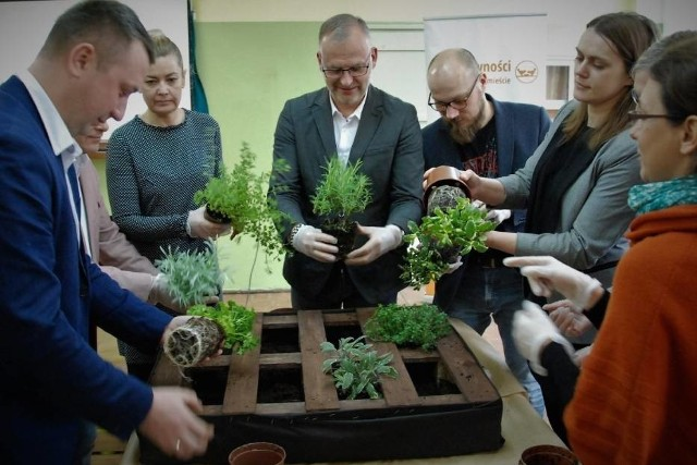 W Gdyni powstaną Społeczne Ogrody