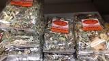 Chomiki, myszki, świnki morskie i króliki uwielbiają zioła pochodzące z polskich łąk i ogrodów