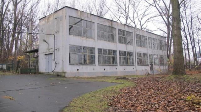 Spółka Green Park Silesia wycofała się z wniosku o zezwolenie na usunięcie drzew na działce przy ulicy Targowej. Przeczytaj, jakie jest tego powód.