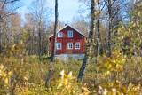 Działki na sprzedaż w Lubuskiem w urokliwej okolicy - przy jeziorach, rzekach, lasach