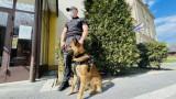 Białystok. Narkotyki w areszcie śledczym. Pies znalazł je podczas obchodu przy murze [ZDJĘCIA]