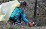 """W grudziądzkich lasach i parkach trwa """"Sprzątanie Świata"""" Zobacz zdjęcia z lasu przy rondzie Popiełuszki"""
