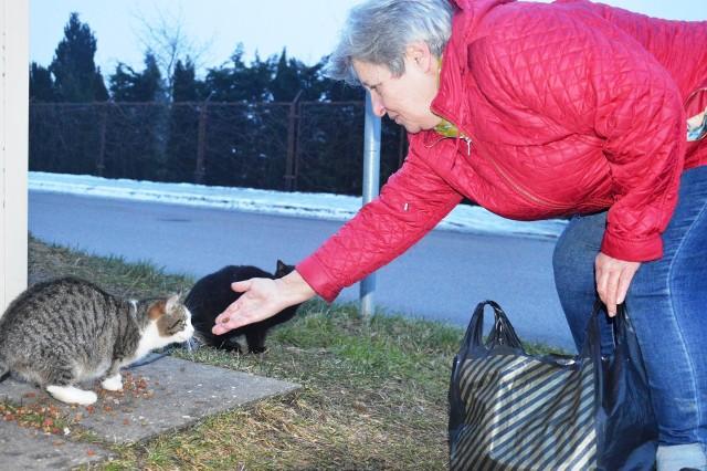 Pani Teresa od wielu lat opiekuje się bezdomnymi zwierzętami.