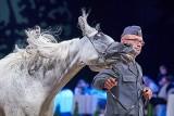 Pride of Poland 2018. Sprzedano zaledwie sześć koni. Za 501 tys. euro [DUŻO ZDJĘĆ]