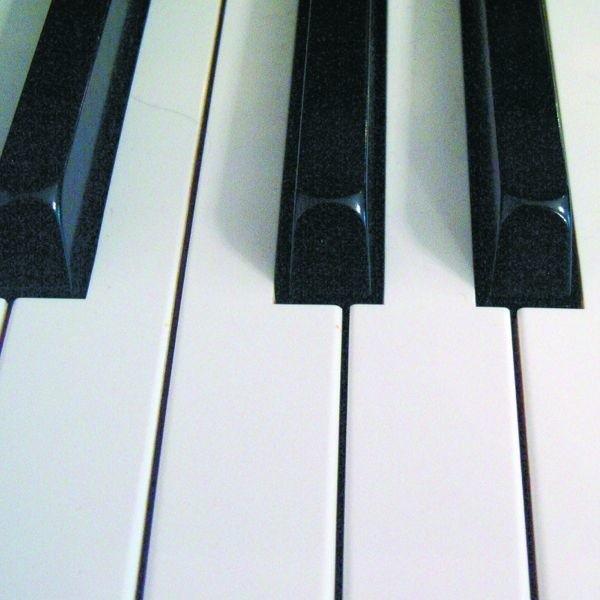 Wszyscy uczestnicy to renomowani artyści, uznani przez najwybitniejszych ekspertów w dziedzinie pianistyki.