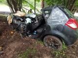 Wypadek na drodze 463 Kolonowskie-Zawadzkie. Auto uderzyło w drzewo, na ratunek został wezwany śmigłowiec LPR