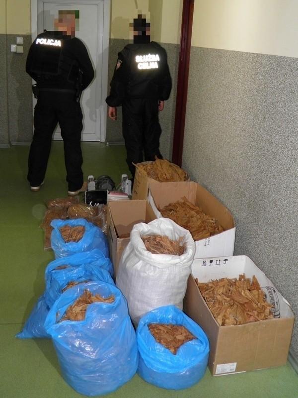 Policjanci zabezpieczyli tytoń w LęborkuPolicjanci zabezpieczyli tytoń w Lęborku