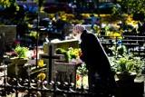 Cmentarze zamknięte. Branża liczy straty. Premier zapowiada wsparcie dla handlowców