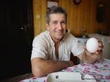 Wielkie jajo zniosła kura w naszym regionie. Zobaczcie zdjęcie!